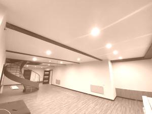 Матовые натяжные потолки + переход уровня